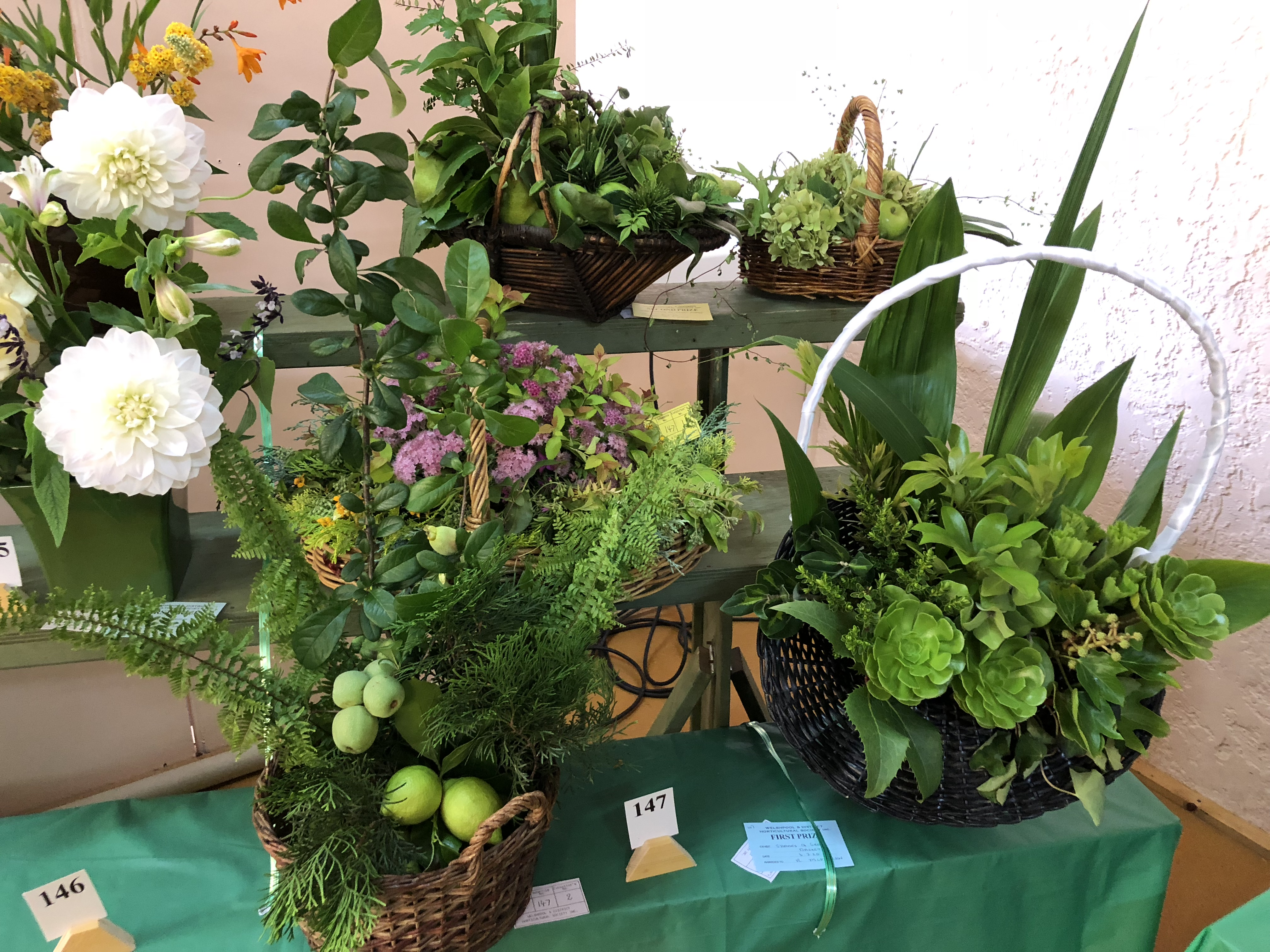 'The Beauty of Leaves' was this years theme for the Autumn Flower Show