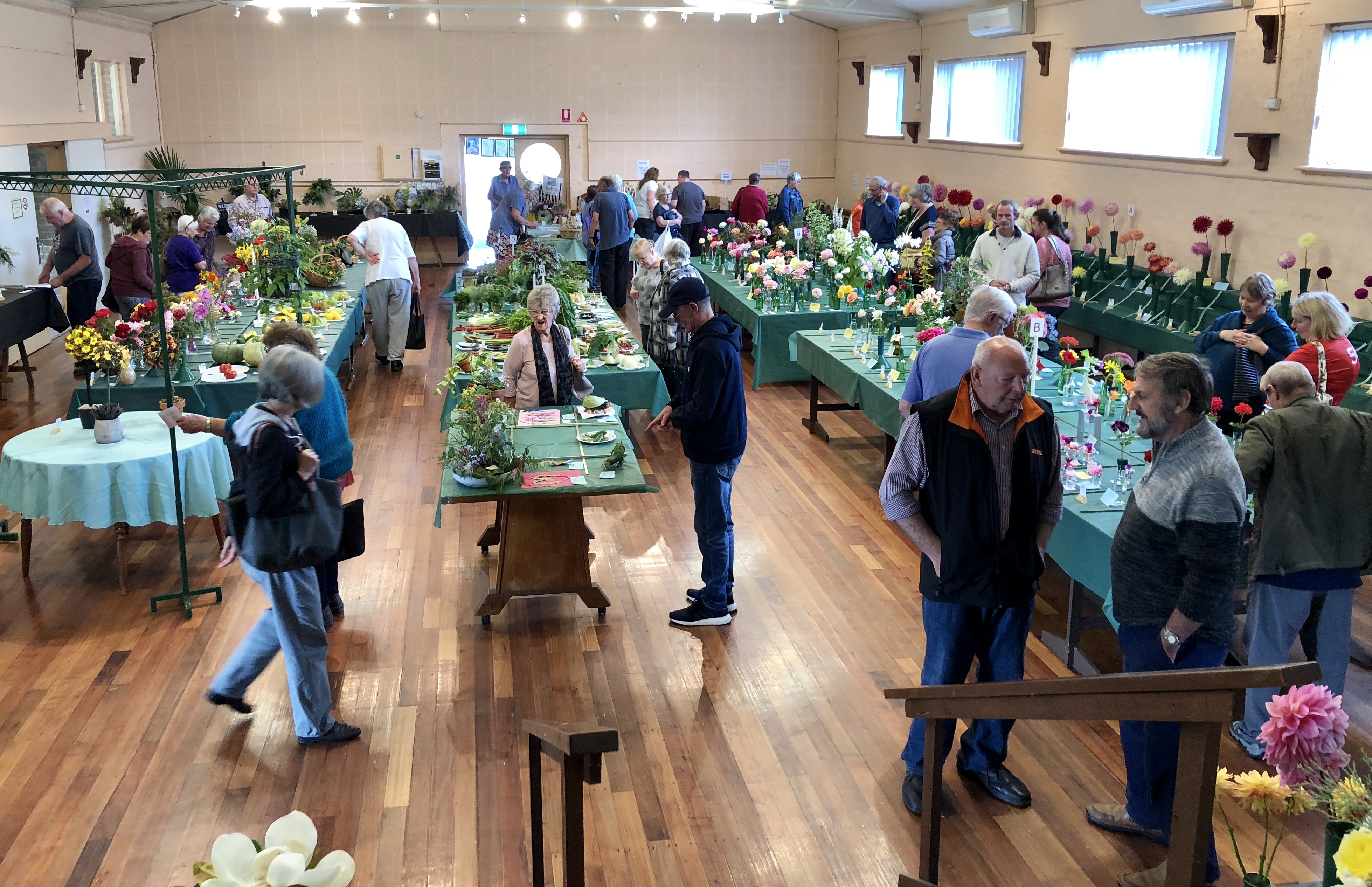 Welshpool & District Horticultural Society's 59th Autumn Show
