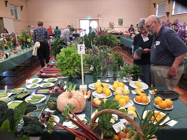 Welshpool & District Horticultural Society - 58th Spring Show